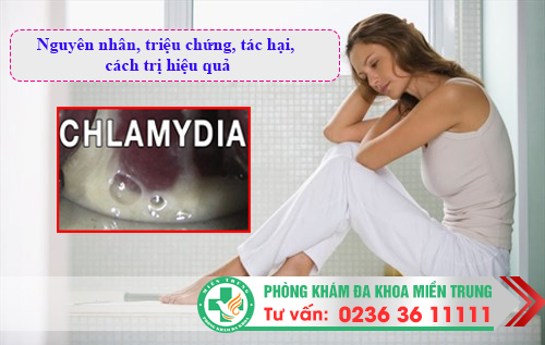Chlamydia: Nguyên nhân, triệu chứng, tác hại, cách trị hiệu quả