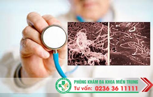 Biện pháp hỗ trợ điều trị bệnh hạ cam